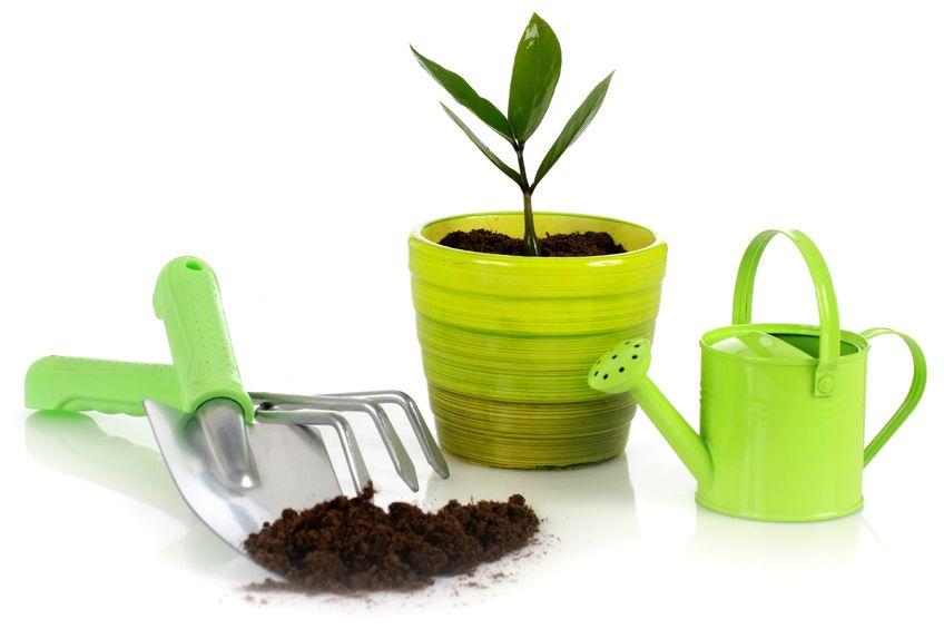 Jardinage conciergerie d 39 entreprise services aux for Entreprise jardinage